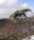 Mt Egbert NY by Birdny in Views in New Jersey & New York