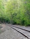 RR Tracks near Rt 55 in NY by Birdny in Trail & Blazes in New Jersey & New York
