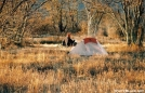 Backpacker on Bob Bald by Tipi Walter in Tent camping