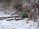 Wild Bird Camp by Tipi Walter in Tent camping