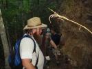 Ed Bell Surveys A Root Ball