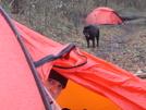 Rainstorm And Windstorm On Trail 149