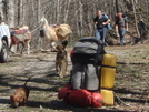 Llamas, People, Dogs And Packs by Tipi Walter in Views in North Carolina & Tennessee