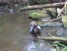 Shunka Crossing Kirkland Creek by Tipi Walter in Views in North Carolina & Tennessee