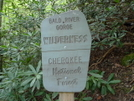 Bald River Sign by Tipi Walter in Views in North Carolina & Tennessee