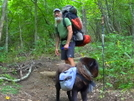 Backpacking Down Horse Cove Ridge by Tipi Walter in Views in North Carolina & Tennessee