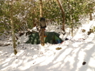 Camping In The Snow On The South Fork Citico