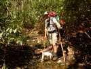 N'ville Randy Hikes The North Fork Citico by Tipi Walter in Other People