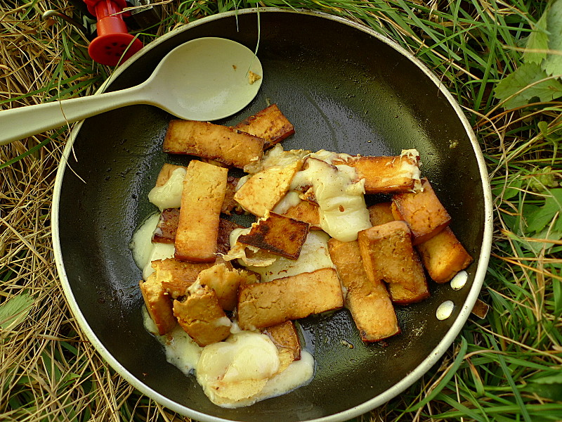 Fried Tofu and Goat Cheese