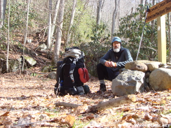 New Trailpost On The Sycamore/bmt