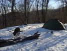 What Minus 10 Looks Like by Tipi Walter in Tent camping