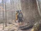 With The Big Tree Nation/kilmer/feb'09 by Tipi Walter in Views in North Carolina & Tennessee