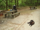 Fish Hatchery Picnic Tables On The Bmt
