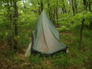 A Slack Looking Tarptent by Tipi Walter in Tent camping