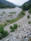 Shenandoah River near Harpers Ferry