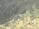 Kea On Roost Day 3 Mt #2