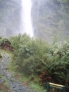 Sutherland Falls Day 3 Mt #5 by EarlyBird2007 in Other Trails