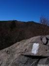 White Blaze in Grayson Highlands by Booley in Trail & Blazes in Virginia & West Virginia