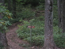 Sept07 Woody Gap To Amicalola