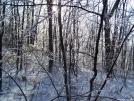 Shenandoah NP by 1Pint in Trail & Blazes in Virginia & West Virginia
