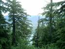 Ketchikan - Deer Mountain Trail 7 by camojack in Special Points of Interest
