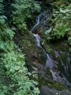 Ketchikan - Deer Mountain Trail 12 by camojack in Special Points of Interest