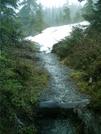 Ketchikan - Deer Mountain Trail 17