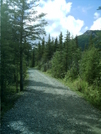 Denali Trails 8 by camojack in Special Points of Interest