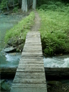 Skagway Trails - Footbridge by camojack in Special Points of Interest