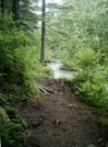 Skagway Trails - Footpath 2 by camojack in Special Points of Interest