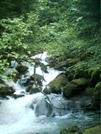 Skagway Trails - Cascade 2 by camojack in Special Points of Interest