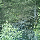 Alaska 2011 - Kodiak stream by camojack in Special Points of Interest