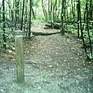 blue blaze trail by camojack in Trail & Blazes in Virginia & West Virginia