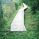 boardwalk just South of US 522 by camojack in Trail & Blazes in Virginia & West Virginia