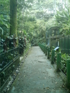 Walkway In The National Zoo by camojack in Special Points of Interest