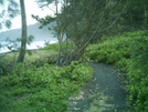 Waipio Valley Trail 2 by camojack in Special Points of Interest