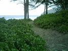 Waipio Valley Trail 6 by camojack in Special Points of Interest