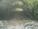 Kaloko-honokohau Nhp Hike 4