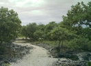Kaloko-honokohau Nhp Hike Hike 3 by camojack in Special Points of Interest