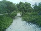 Kaloko-honokohau Nhp Hike by camojack in Special Points of Interest