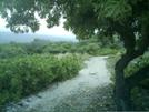 Kaloko-honokohau Nhp Hike 19 by camojack in Special Points of Interest