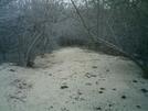 Kaloko-honokohau Nhp Hike 14 by camojack in Special Points of Interest