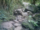 Kalalau Trail 2 by camojack in Special Points of Interest