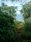 Kalalau Trail 6 by camojack in Special Points of Interest