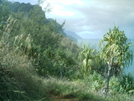 Kalalau Trail 7 by camojack in Special Points of Interest