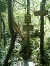 Kalalau Trail - Hanakapi'ai Falls Signage by camojack in Special Points of Interest