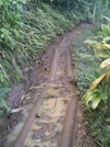 Kalalau Trail Logs by camojack in Special Points of Interest