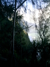 Kalalau Trail View 2 by camojack in Special Points of Interest