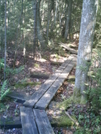 Boardwalk by camojack in Trail & Blazes in Vermont