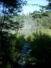 Boardwalk Near Sucker Pond 4 by camojack in Trail & Blazes in Vermont